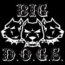 big dogs restoration